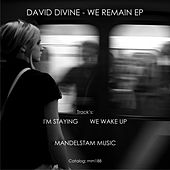 We Remain - Single by David Divine