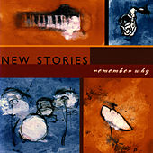 Remember Why by New Stories