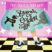 Pop, Rock & Doo Wop - Sounds from the Golden Age Vol. 1 by Various Artists