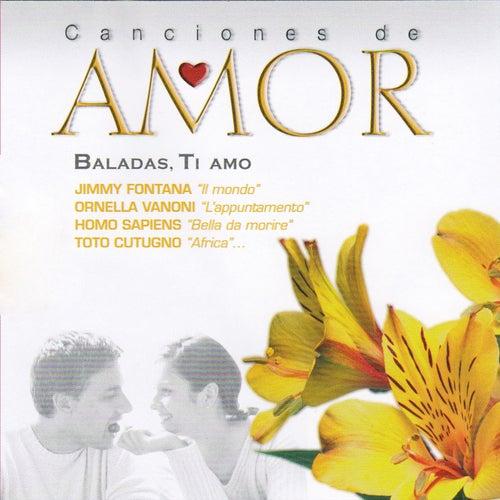 Baladas Ti Amo by Various Artists