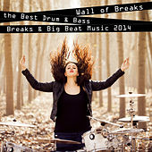Wall of Breaks - The Best Drum & Bass, Breaks & Big Beat Music 2014 by Various Artists