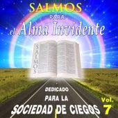 Salmos para el Alma Invidente, Vol. 7 by David & The High Spirit