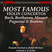 Most Famous Violin Concertos by Various Artists