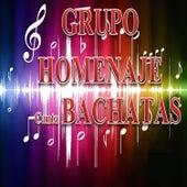 Canta las Canciones de Bachatas by Grupo Homenaje