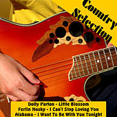 Country Selection 1 by Various Artists