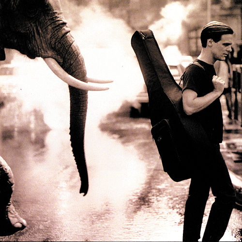On A Day Like Today by Bryan Adams