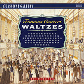 Famous Concert Waltzes by Various Artists