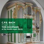 C.P.E. Bach: 6 Organ Sonatas by Ton Koopman