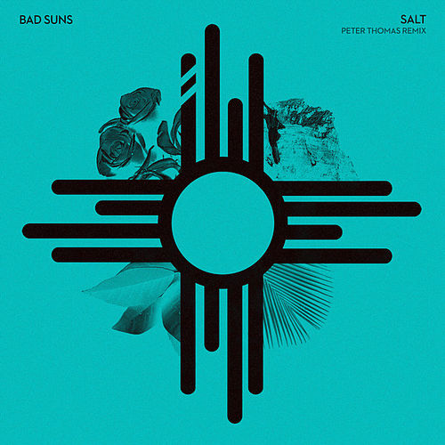 Salt (Peter Thomas Remix) by Bad Suns