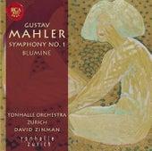Gustav Mahler: Sinfonie Nr. 1 by David Zinman