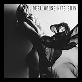Deep House Hits 2014 by Various Artists