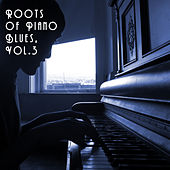 Roots of Piano Blues, Vol. 3 by Various Artists