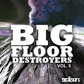 Big Floor Destroyers Vol. 5 by Various Artists