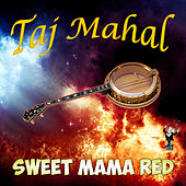 Sweet Mama Red by Taj Mahal