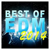 Best Of EDM 2014 - EP by Various Artists