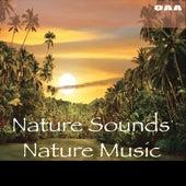 Nature Sounds, Nature Music by Nature Sounds Nature Music