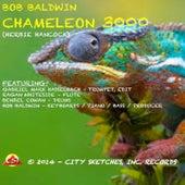 Chameleon 3000 by Bob Baldwin