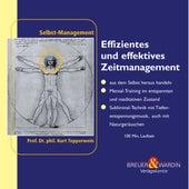 Effizientes und effektives Zeitmanagement - Selbst-Management by Kurt Tepperwein