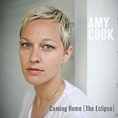 The Sky Observer's Guide Pre-Release Single by Amy Cook