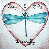 Dragonfly by Andy