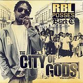 The City Of Gods by R.B.L. Posse