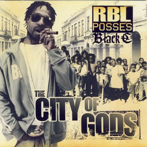 The City Of Gods by R.B.L. Posse