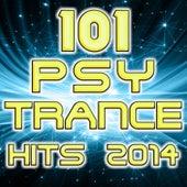 Psytrance 101 PsyTrance Hits 2014 by Various Artists