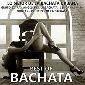 Best Of Bachata (Lo Mejor de la Bachata Urbana - 25 Bachata Hits) by Various Artists