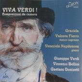 Viva Verdi! Composizioni da camera by Veneziela Naydenova