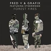 Forest Fires by Fred V