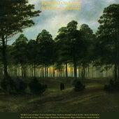 Pachelbel: Canon in D Major - Francesco Rinaldi: Works - Beethoven: Moonlight Sonata & for Elise - Mozart: Turkish March - Bach: Air On the G String - Albinoni: Adagio - Mendelssohn: Wedding March - Wagner: Bridal Chorus - Schubert: Ave Maria by Various Artists
