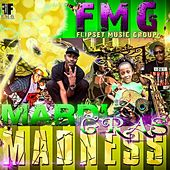 Mardi Gras Madness by Various Artists