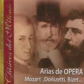 Clásicos del Milenio, Arias de Opera, Mozart, Donizetti, Bizet... by Various Artists