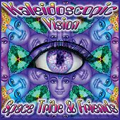 Kaleidoscopic Vision by Various Artists