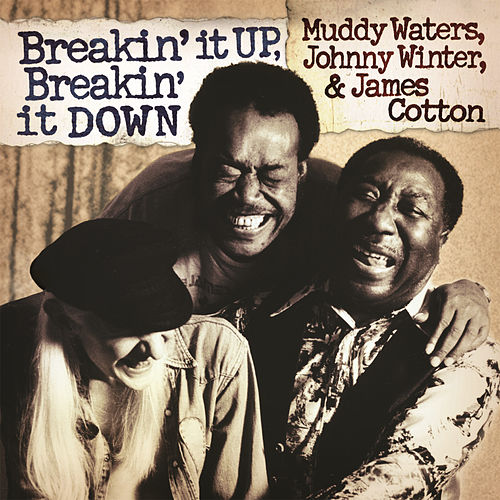 Breakin' It Up, Breakin' It Down by James Cotton