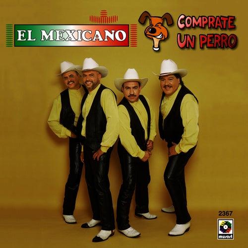 Comprate Un Perro by Mi Banda El Mexicano