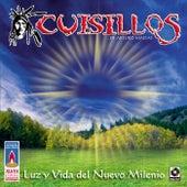Luz Y Vida Del Nuevo Milenio by Banda Cuisillos