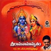 Sri Ramanaamamrutham by S.P.B.