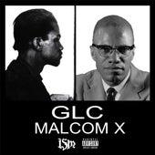 Malcolm X by GLC