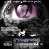 The Awakening by Black Widow (Rock)