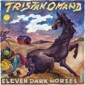 Eleven Dark Horses by Tristan Omand