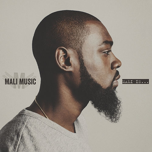 No Fun Alone by Mali Music