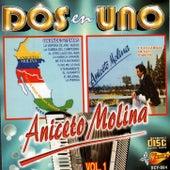 Dos En Uno by Aniceto Molina