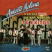 16 Exitos by Aniceto Molina