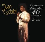 Lo Mejor en Bellas Artes - 40 Aniversario by Juan Gabriel