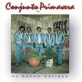 De Nacho Galindo by Conjunto Primavera