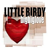 BigBigLove by Little Birdy