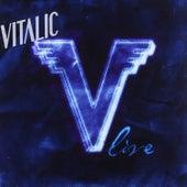 V Live by Vitalic
