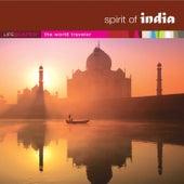 Spirit of India by Wayne Jones
