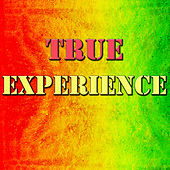 True Experience by Various Artists